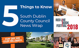 South Dublin County Council News Wrap sumamry image