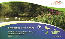 Draft Biodiversity Action Plan for South Dublin County sumamry image