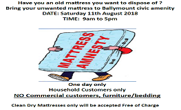 Mattress Amnesty  sumamry image