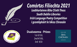 Filíocht 2021 South Dublin Libraries Irish Language Poetry Competition sumamry image
