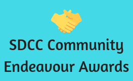 South Dublin County Council Community Endeavour Awards 2018 sumamry image