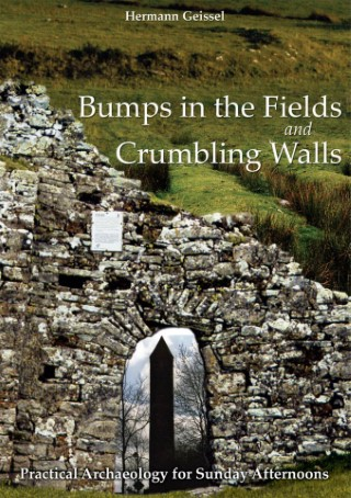 bumps_in_the_fields